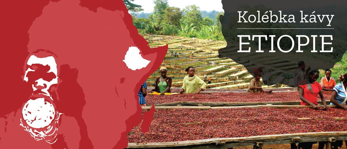 Etiopská káva