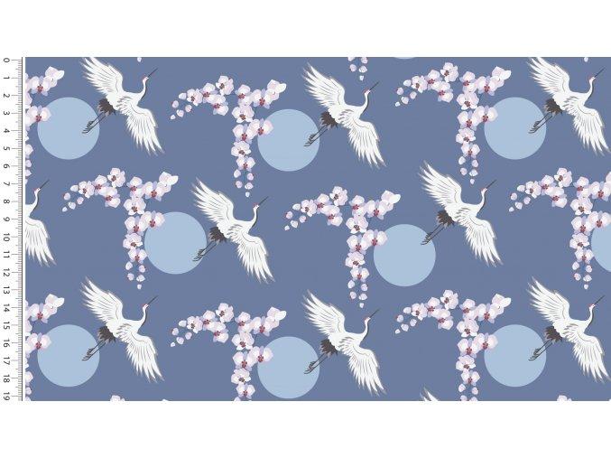 4512 lady looks cranes 1101