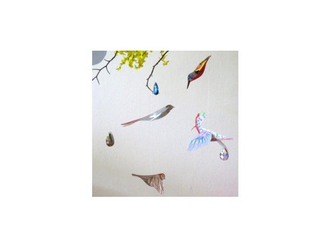 ptaci nahled 300x300
