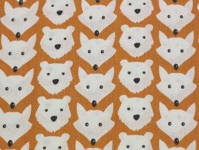 Bavlněné plátno  - medvědi a lišky