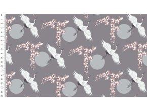 4512 lady looks cranes 764