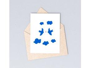 vlaštovky modré dita
