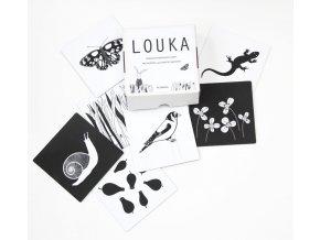 kontrastní karty pic design LOUKA