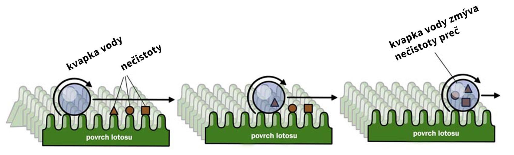 nanotechnológia-samočistiaci efekt