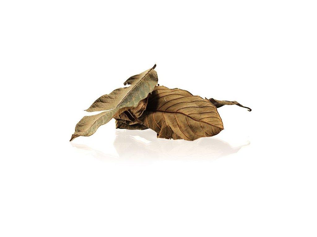 Listy kvajávy hruškové