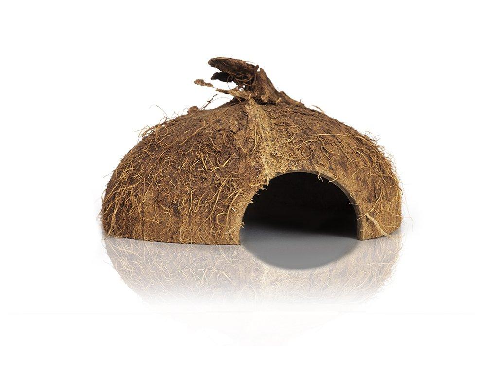 kokosořechweb