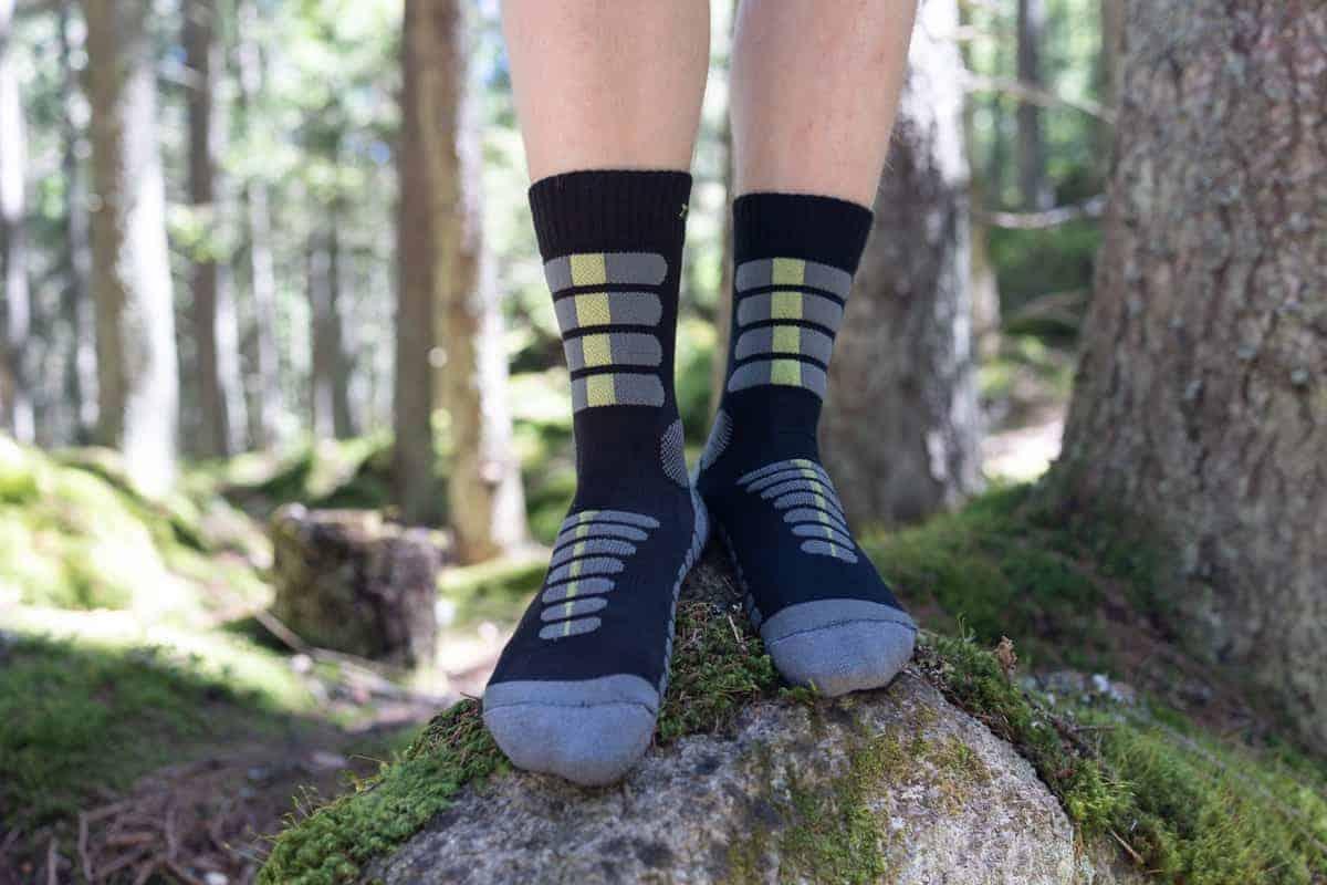 ponozky-v-lese-2