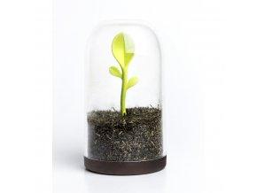 28223 doza na caj se lzickou qualy sprout jar