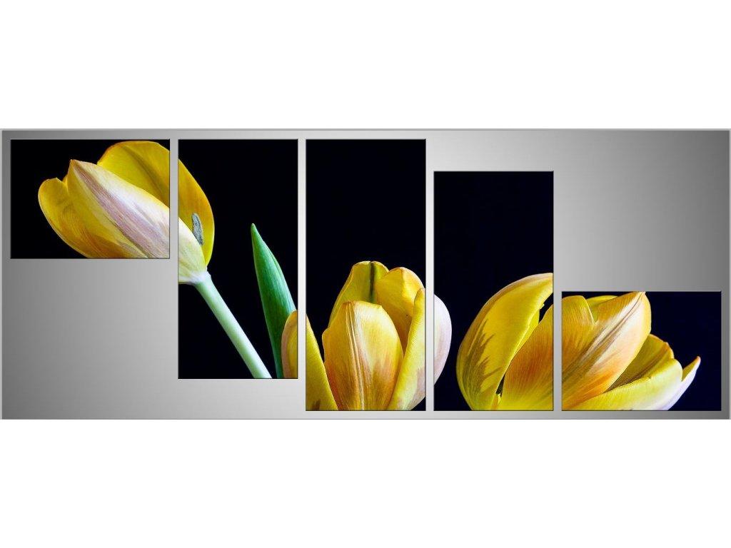 Pětidílný fotoobraz 150x68 tulipány