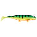 TheBigFish 230