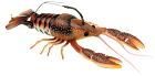 Clackin Crayfish