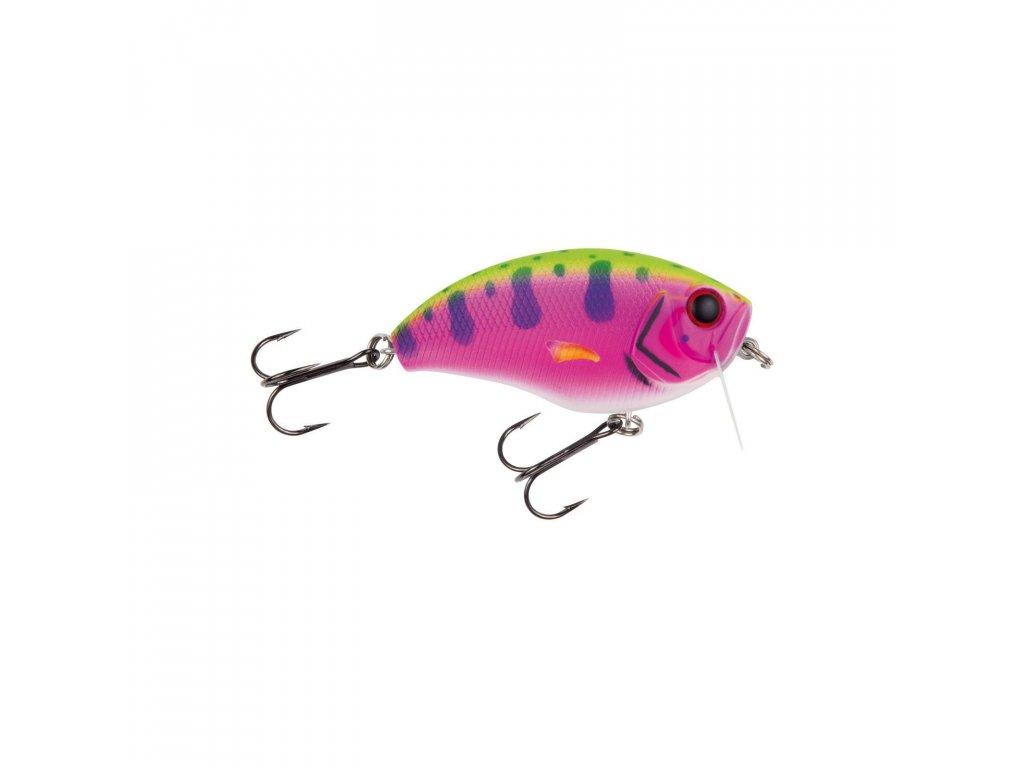 Jackson - Hechtwobbler 6,8 (RainbowTrout)