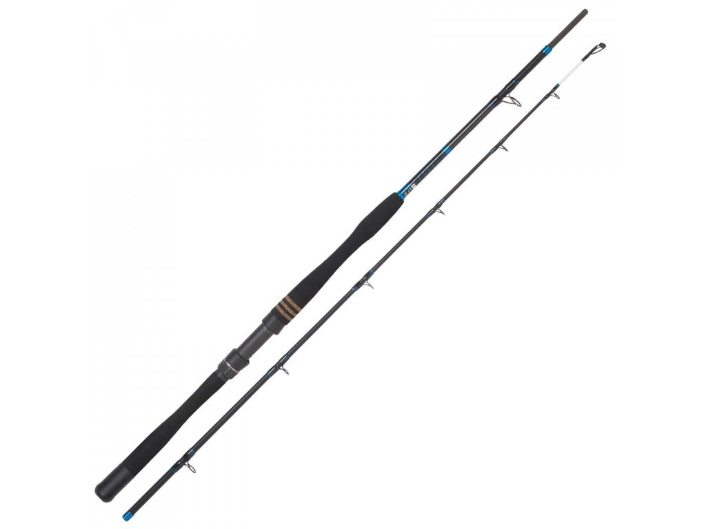 Jackson Sea - Heavy Fish (2,10m / 300-1100 g)