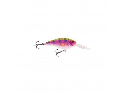 Jackson - Barschwobbler 6,0 (RainbowTrout)