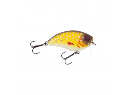 Jackson - Hechtwobbler 6,8 (BrownTrout)