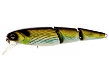 v joint minnow HC09