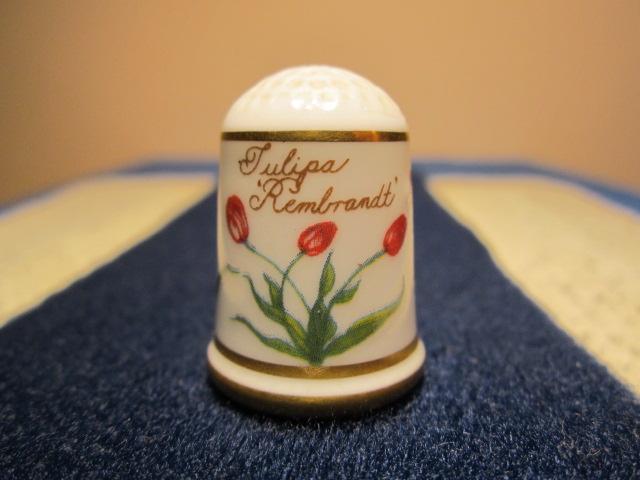 FP Tulipány