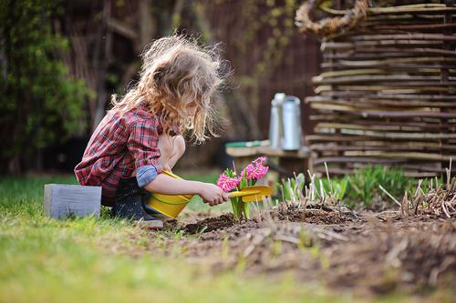 Jarní příprava půdy