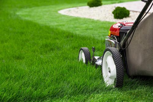 Jak si vybrat sekačku na trávu