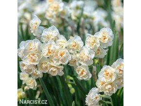 Narcis Bridal Crown 2