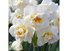 Narcis Bridal Crown 1