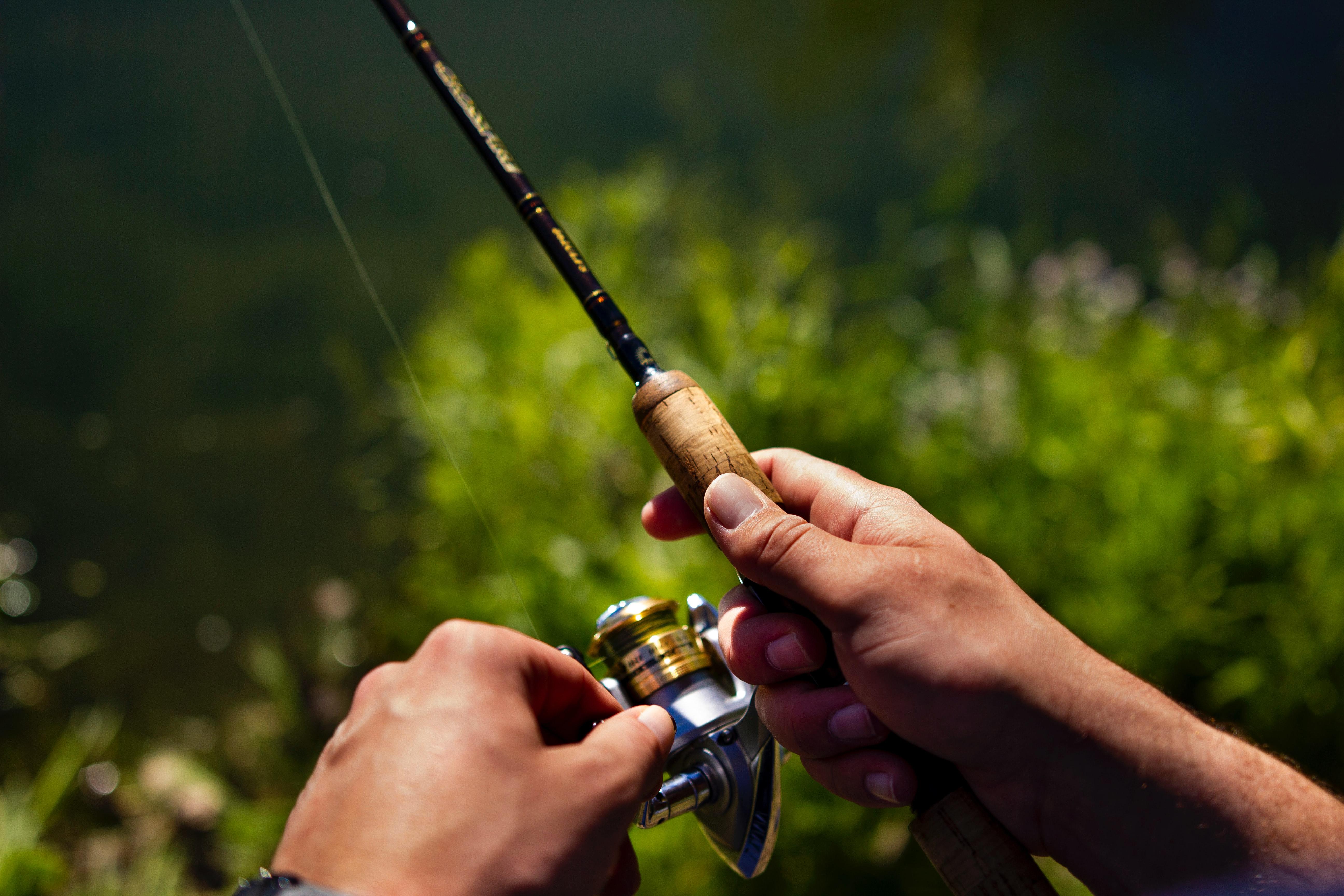 Jak vybrat rybářský vlasec