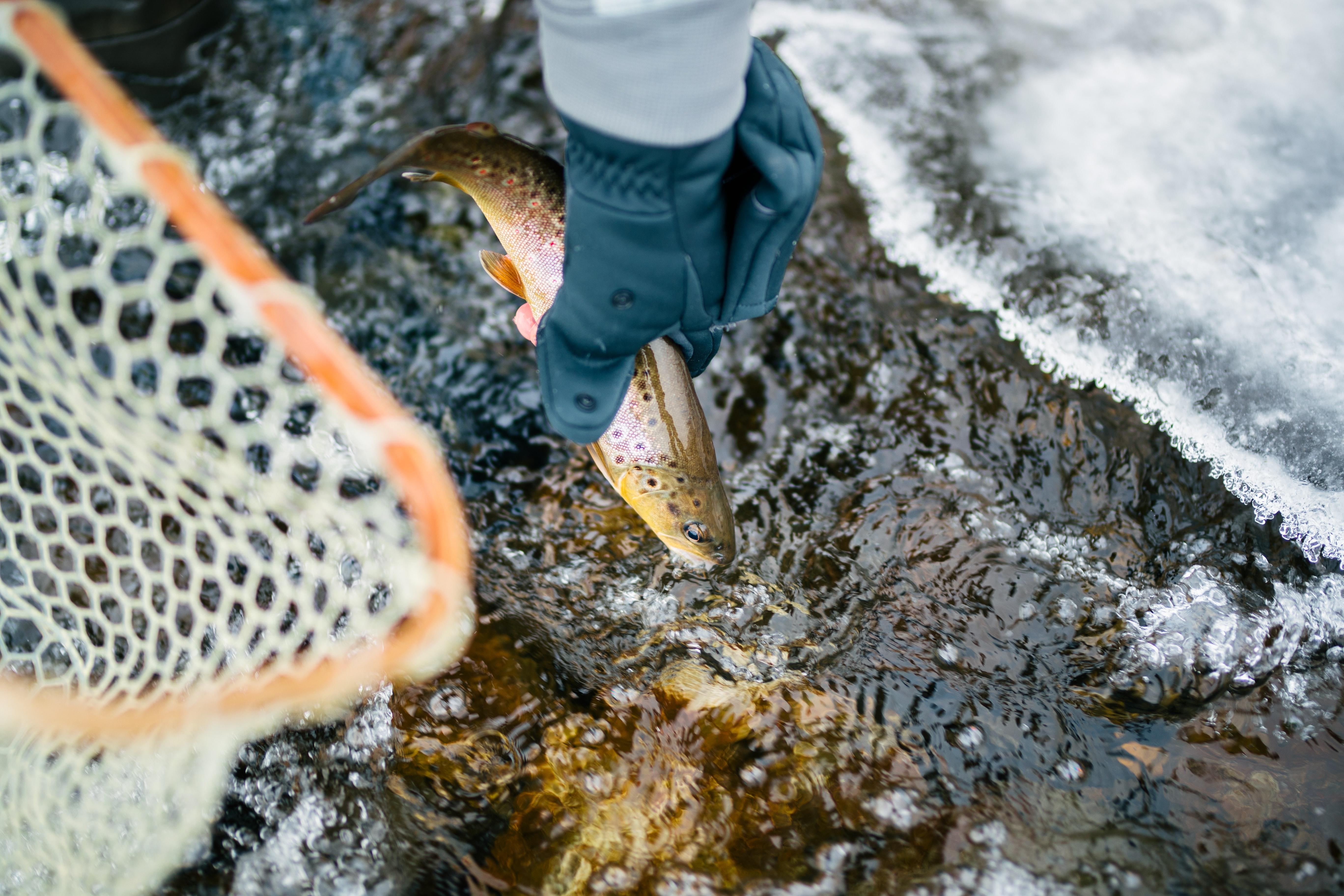 Rybolov po zimě
