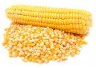 Kukuřičný partikl