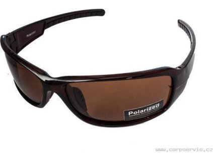 Brýle polarizační P6120/3