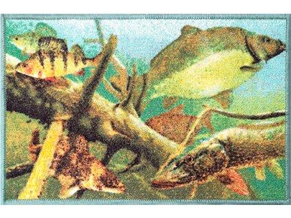 Rohož Delphin AQUA