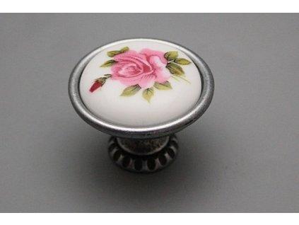 Růže Elizabeth růžová SSNARU101