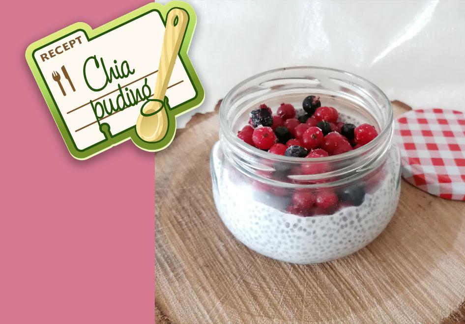 Chia pudink s lesním ovocem pro děti od 12 měsíců