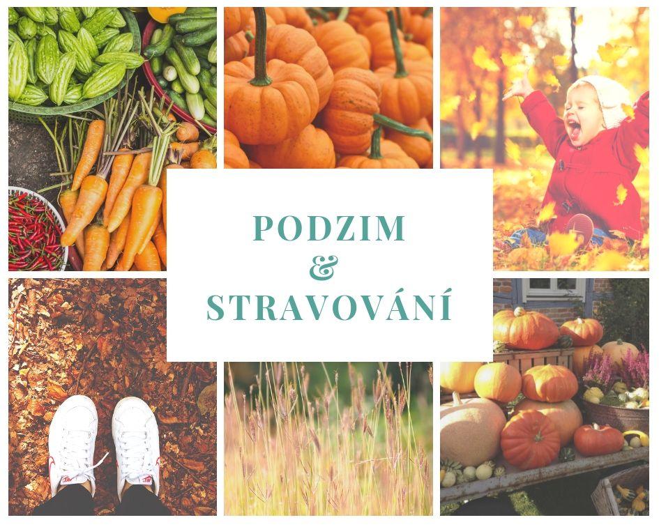 podzim-stravovani-kolaz