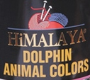 Dolphin Animal Colors
