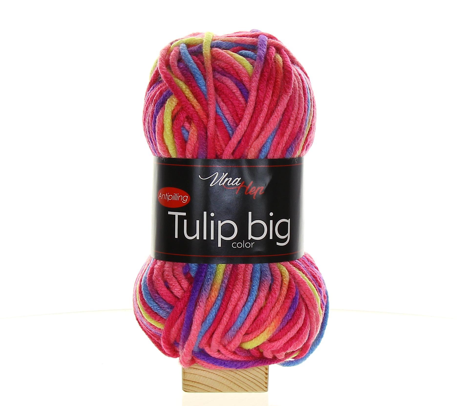Tulip Big Color