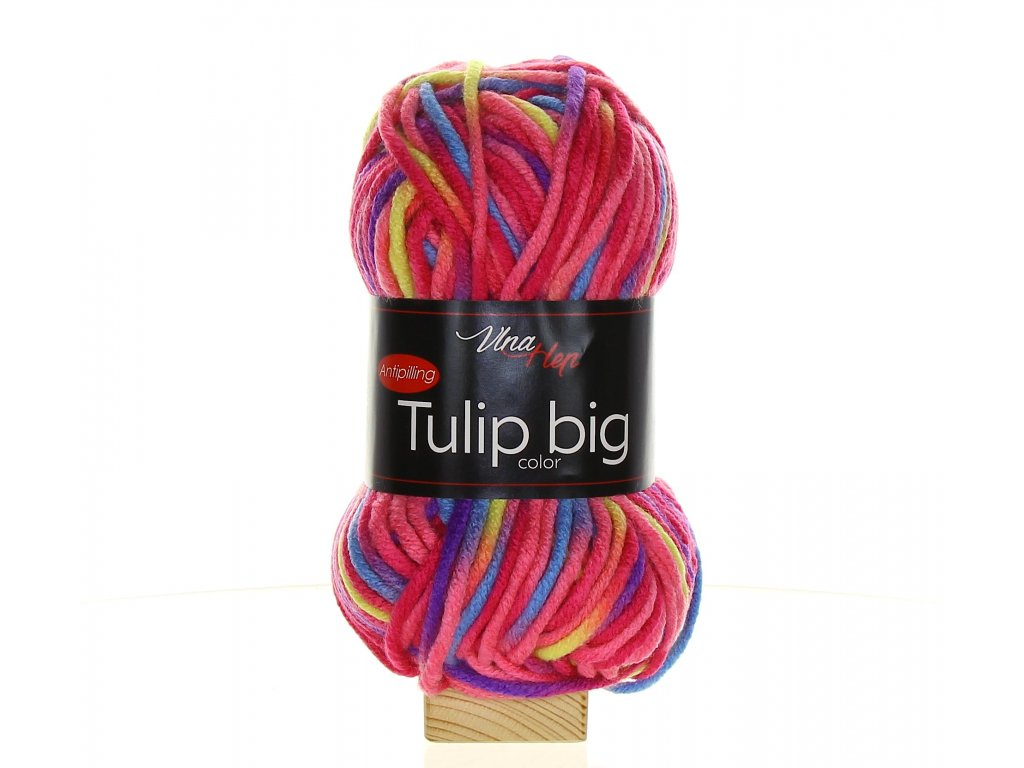 TULIP BIG COLOR 5601