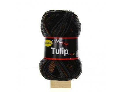 TULIP COLOR 5204