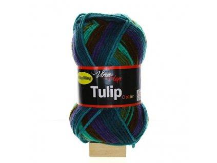 TULIP COLOR 5201