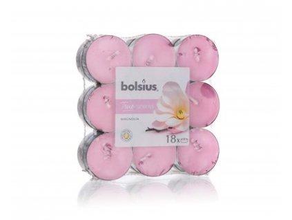 BOLSIUS Svíčka čajová, 18 ks, Magnolia