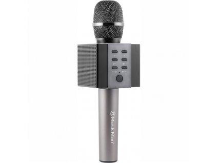 Přenosný reproduktor Technaxx ELEGANCE BT-X45, karaoke mikrofon, černý