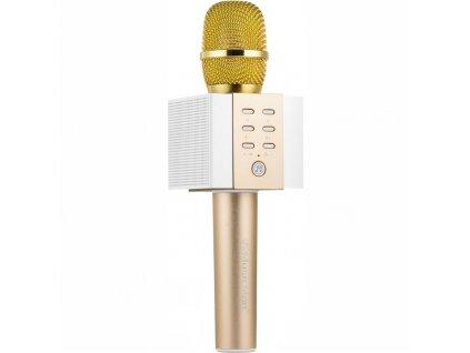 Přenosný reproduktor Technaxx ELEGANCE BT-X45, karaoke mikrofon, zlatý