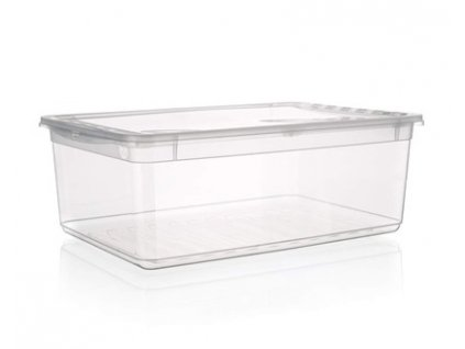 KEEEPER Box úložný BEA 8 l, 39 x 26,5 x 10 cm