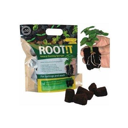 Root it sadbovací kostky, 50ks