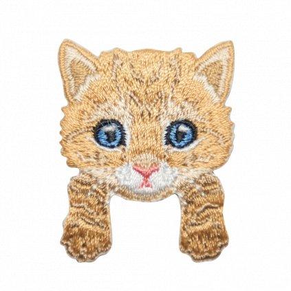 Kotě 1 nášivka