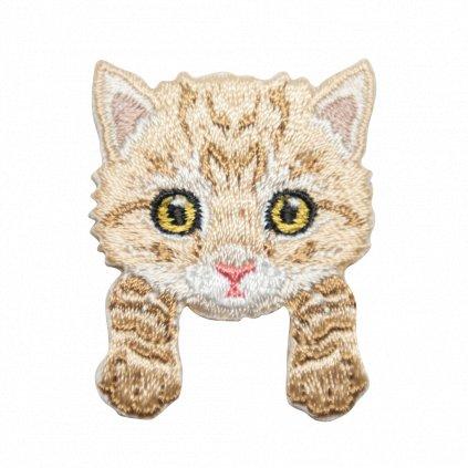 Kotě 3 nášivka