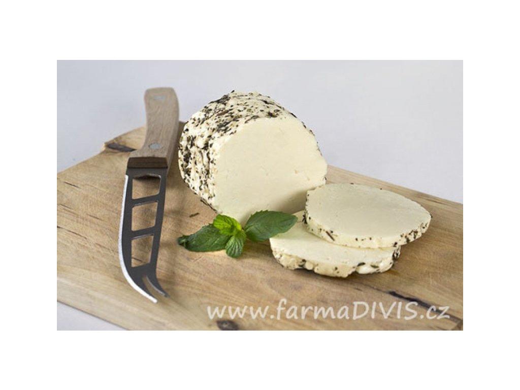 2016 8 10 syr na grilovani