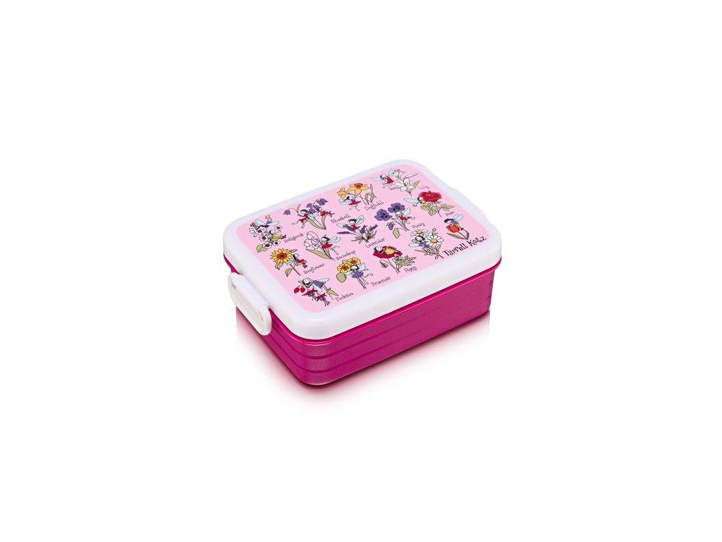 flower fairies lunchbox tyrrell katz