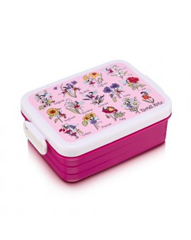 flower fairies lunchbox tyrrell katz