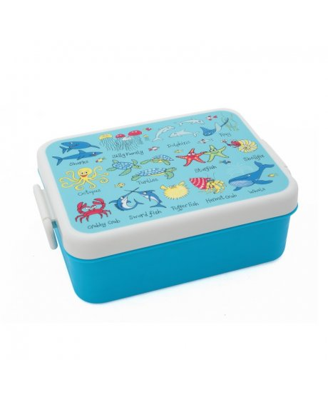 tyrrell katz ocean lunchbox
