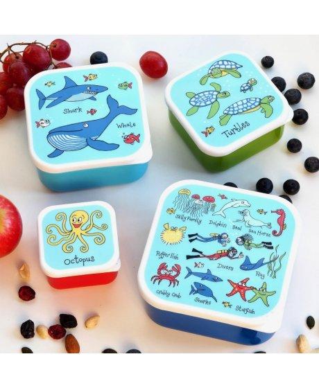 0009 ocean snackbox